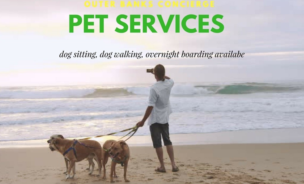 Outer Banks Dog Sitters / Dog Walkers