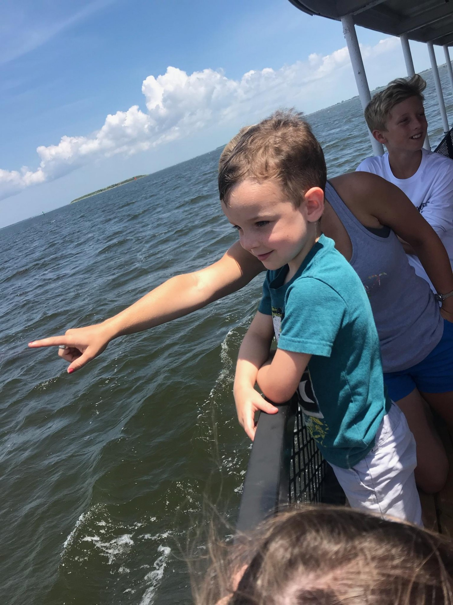 Kids love seeing dolphins on the Harbor Star at Wanchese Marina